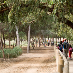 Guided tours around Torrevieja Natural Park