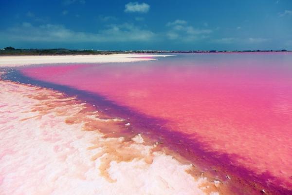 Torrevieja's salt lakes